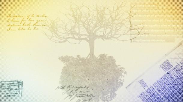 Cómo Hacer Un árbol Genealógico Todos Los Apellidos Vascos Todos