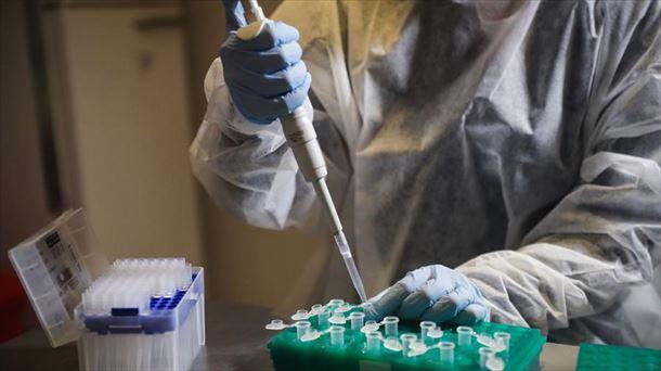 Coronavirus COVID-19: positivo en Euskadi y Navarra, 30 de noviembre de 2020 |  Sociedad