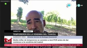 Noticias De Agricultura 2020 Ultima Hora De Actividades Agrarias Actuales Eitb Temas De Interes
