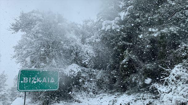 Situación de las carreteras el 4 de enero de 2021 debido a la tormenta de nieve |  Sociedad